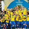 ブラジル代表発表とコパアメリカ開催!!