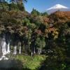 富士山の自然が造り出した奇跡 白糸の滝