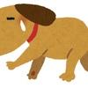 月辞書19/本当に弱い犬は吠えられない