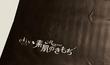 【LOHACO】エリス Megami(メガミ)限定デザイン買ってみた【黒い】