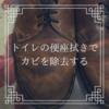 【革靴のカビはトイレ掃除シートで落ちる!】家庭にあるものでできる靴カビへの対処法