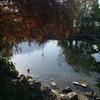 秋のガルダ湖 〜 トレンティーノ・アルトアーディジェから、ひとコマ