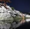 今日は冷たい雨でした。ちょっと寒いと彦根城の桜を見る気になりません