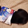 今日の黒猫モモ&白黒猫ナナの動画ー729