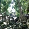 【カンボジア女子一人旅】天空の城?のモデルになったと言われるベンメリア遺跡とは?