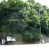 大浦バス停の右左