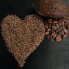 チョコレートとココアは何が違うの?