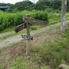 太陽と緑の道コース№11(中大沢~深谷)を歩いてみました