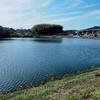 浜池(広島県福山)