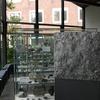 【ニュース】「九大総合研究博物館、資料・標本が散逸の危機 移転後の保存先決まらず 福岡」( 産経ニュース)
