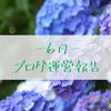 6月のブログ運営報告