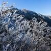 大山初冠雪の翌日に三鈷峰へ登ってきました。