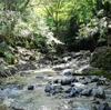 川へ遊びに行ってきました。川の流れる音で、声が聞き取りにくいこともあります