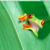PCのデスクトップの整理と複数のクラウドの併用方法の模索
