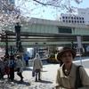 今日は家族全員で日本橋と青山へお花見散歩に出掛けました。