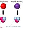 原子中の陽子と電子はどれほどの力で引き合っているのか?