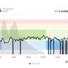 ジョギング10.56km・月間走行距離が200kmを超えました