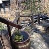 傾斜地に建つ別荘の持つ魅力〜眺望と危険の相互関係