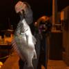 【徳島県】美波町の釣り場3選!足場が良くて釣りやすい!そして釣れる。