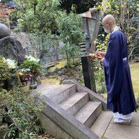 仏教とお寺とお坊さんのアンテナ