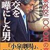 小泉純一郎・細川護煕連携に関する、若干の考察