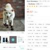 【暑すぎる】岐阜県多治見では40.7℃・美濃では40.6℃を観測!ワンちゃんの肉球保護・肉球ケアに犬の靴・靴下を履かせてみては?