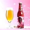 八重桜の花と葉を使った桜餅風味のビールでお花見はいかが? -おやつtime