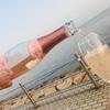 季節限定!女性でも美味しく飲めるスパークリングワインを紹介したい【サクラ フリッツァンテ】