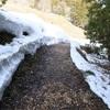 残雪と春の色