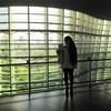 国展&こいのぼりなう♪国立新美術館♪