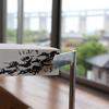 沙弥島に行ってきました!【瀬戸内国際芸術祭2019レポ】