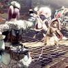 【MHW】プレイ日記:オッドアイガールと役満猫の気ままな珍道中~今回はちょっと寄り道!任務も良いけどサブ的なイベントもなかなか勲章集めには重要かも!?