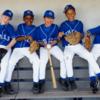 ジュニア野球選手のトップアスリートとしてスキル向上を目指す際に重要とされる能力(「完成像、理想像を明確にもつ」「運動観察眼をもつ」「動きのコツを明確に挙げることができる」「指導者や仲間の「ことば」を理解できる」)