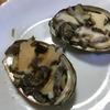 柔らかなアワビをお安く食べるなら、やっぱり家で作るのがお勧め。アワビの酒蒸し、簡単レシピ付き