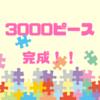 ジグソーパズル初心者が3000ピースに挑戦【全記録】