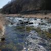 2020年 渓流釣り開幕