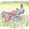 中耕除草と大豆の発芽とハーフタイムデーと『ジャージー・ボーイズ』