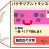 【熱中症】動物にもある、『ペットの熱中症』にご用心!!②症状と検査
