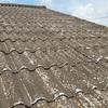 残念ながらこんな屋根材が存在するという事実。