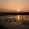 巨椋池の夕日@RX100M2