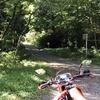 【チョイ乗り】高野原林道へ行く