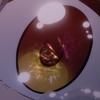 【色づく世界の明日から】12話感想「文化祭!」【2018秋アニメ】