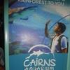 Cairns市内で驚きの光景目撃