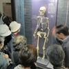 地球の46億年と日本人の4万年 「科博」を見学