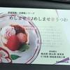 「陽光美術館」のある日本庭園「慧洲園」に向けて出発です♪ 2月26日