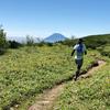 北海道マラソンサブ4に向けて~小出式練習法第9~10週目