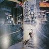 機動警察パトレイバー劇場版と『昭和二十年東京地図』