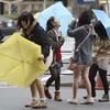 本日は中国・北陸地方などで春一番が吹く可能性あり!!関東ではやや風速が足りないか!?