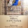 ひらひら落葉 内藤コレクション展 7/7