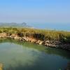 豊島明神池の下の池(香川県豊島)